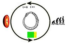 Des modèles cosmologiques à l'archétype du quatre